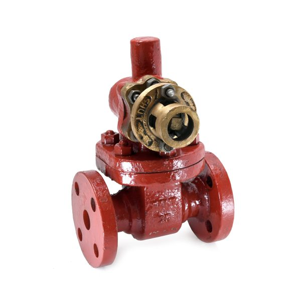 Cast Steel Parallel Slide Blow off Valve